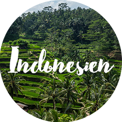 indonesien_link